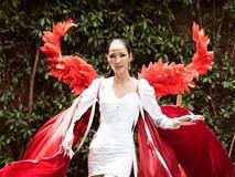 Hoàng Thuỳ đeo cánh thiên thần nội y, thử thách trình diễn áo tắm Miss Universe