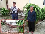 Cụ bà 94 tuổi với bộ tóc dài gần 4m ở Nghệ An tiết lộ lý do chưa gội đầu trong 65 năm qua
