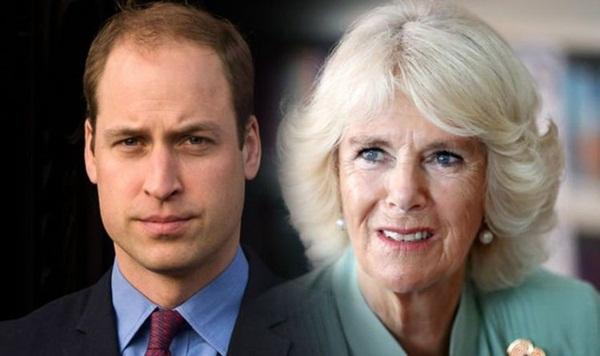 Hoàng tử William đến tận bây giờ vẫn không chấp nhận mẹ kế Camilla, nguyên nhân từ một cuộc gặp bí mật sau khi Công nương Diana qua đời-2