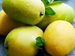 Người Hà Nội thích thú với loại quả hình bầu dục, ăn giống sầu riêng-3
