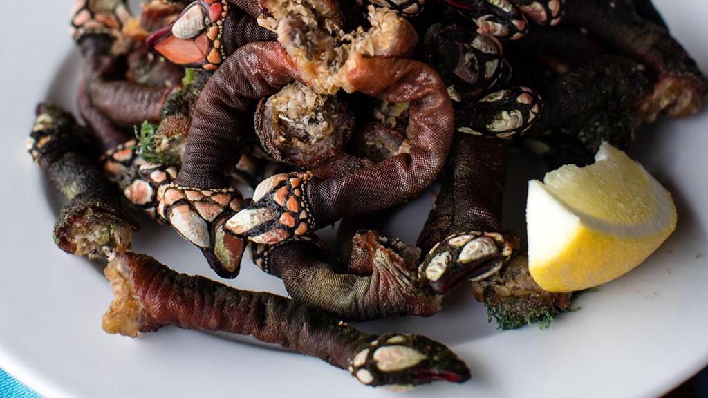 Loại ốc biển xấu xí 3 triệu/con, nhà giàu muốn mua không có-1