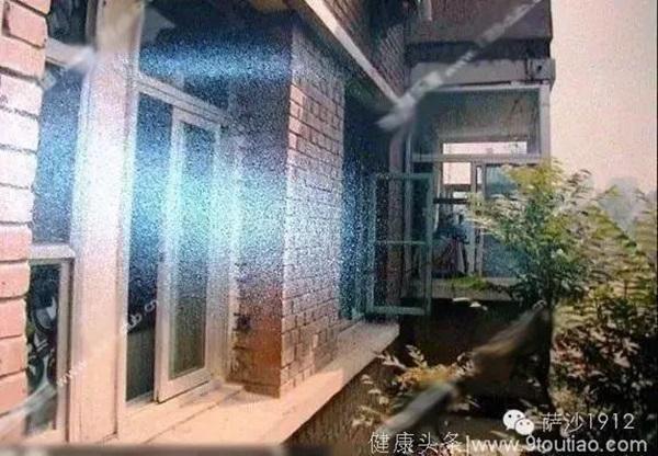 Vụ án 8 cô gái bị sát hại dã man trong nhà trọ-2