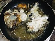 'Siêu phẩm' cá rán nát nhừ khiến dân mạng không khó như mẹ chồng cũng phải thốt lên: 1 điểm về chỗ!