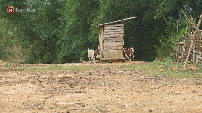 Bản làng nơi những ông trùm ma túy gieo rắc cái chết trắng: Cha mẹ chết vì HIV, con trẻ mồ côi sống lay lắt từng ngày-6