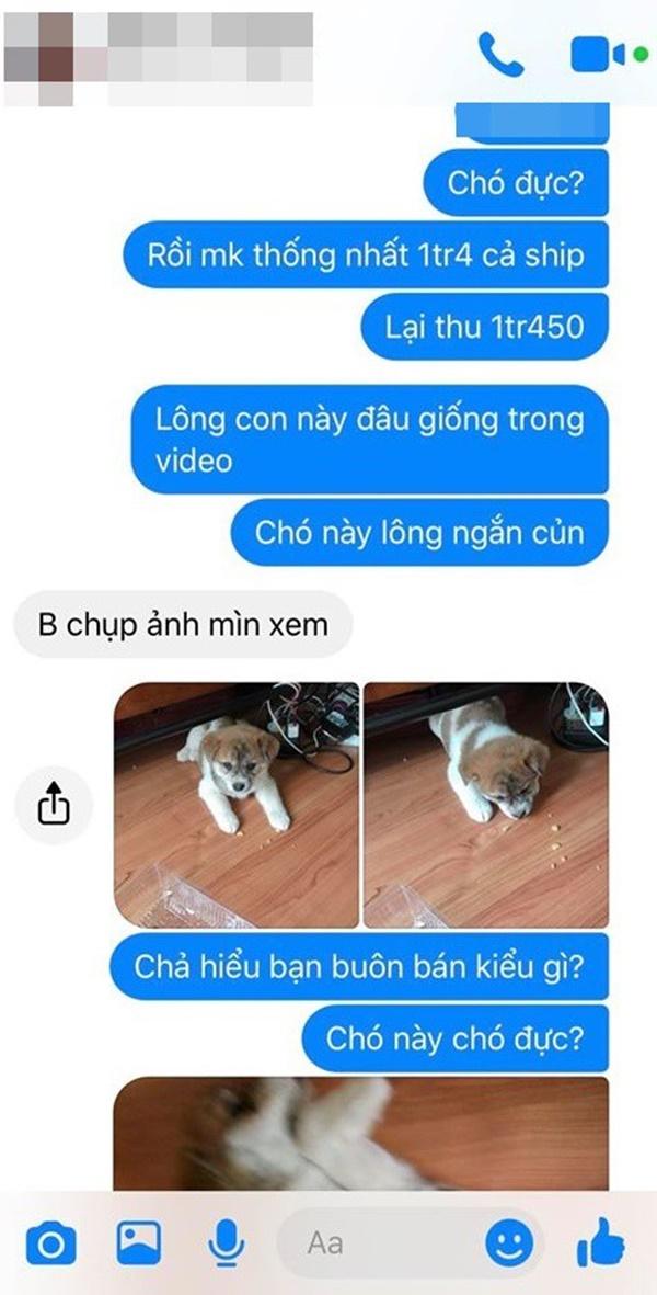 Mua hàng online được nâng lên một tầm cao mới: Mua chó Poodle lai Nhật giá triệu rưỡi, nhận về chó ta 1 tháng tuổi-4