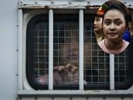 Nước mắt, nụ cười trong phiên xử Ngọc Miu, Văn Kính Dương