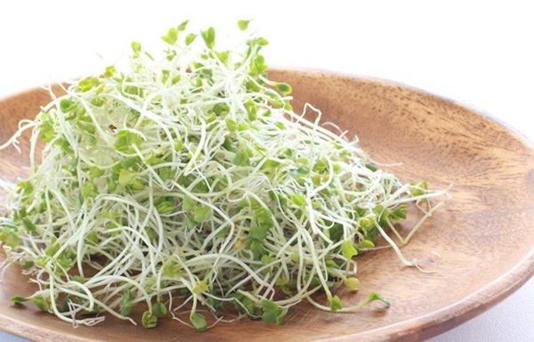 9 loại thực phẩm phổ biến dễ gây ngộ độc-9