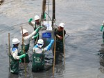 Nước sông Tô Lịch đổi màu sau nửa tháng sử dụng công nghệ Nhật Bản-1