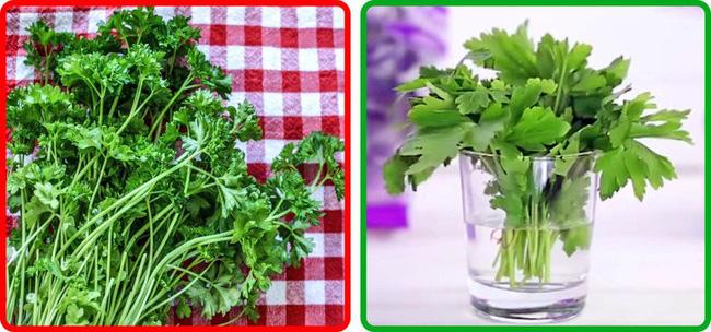 Thật không thể tin nổi chẳng cần tủ lạnh vẫn có thể giữ rau củ quả tươi roi rói nhờ loạt bí kíp đặc biệt-4