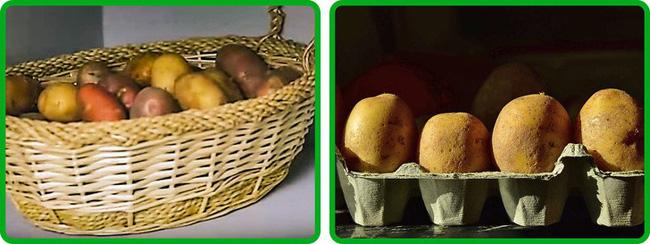 Thật không thể tin nổi chẳng cần tủ lạnh vẫn có thể giữ rau củ quả tươi roi rói nhờ loạt bí kíp đặc biệt-5