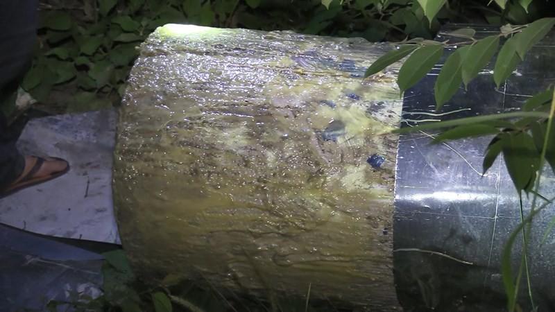 Vụ 2 thi thể trong thùng nhựa: Màn phi tang rùng rợn của hung thủ với bê tông, silicon và trà ướp xác-4
