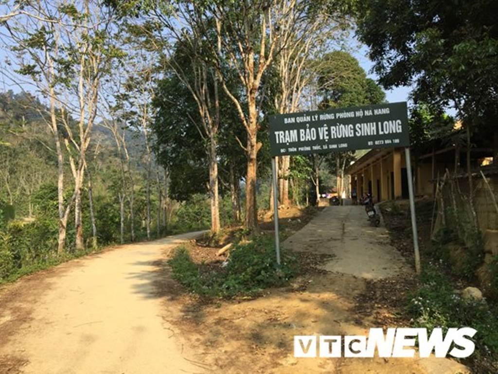 Lạ Tuyên Quang: Cả làng bỏ việc vào rừng đào củ đắt như vàng 9999-2