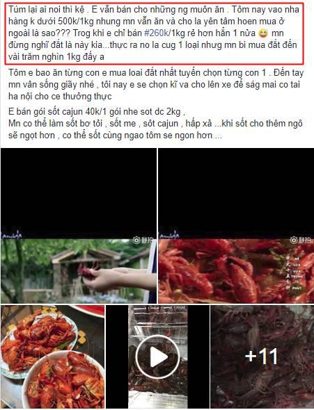 Tôm hùm đất giá nào cũng có bán tràn lan trên mạng, mặc cảnh báo có thể nguy hiểm, bà nội trợ vẫn mua ầm ầm-3