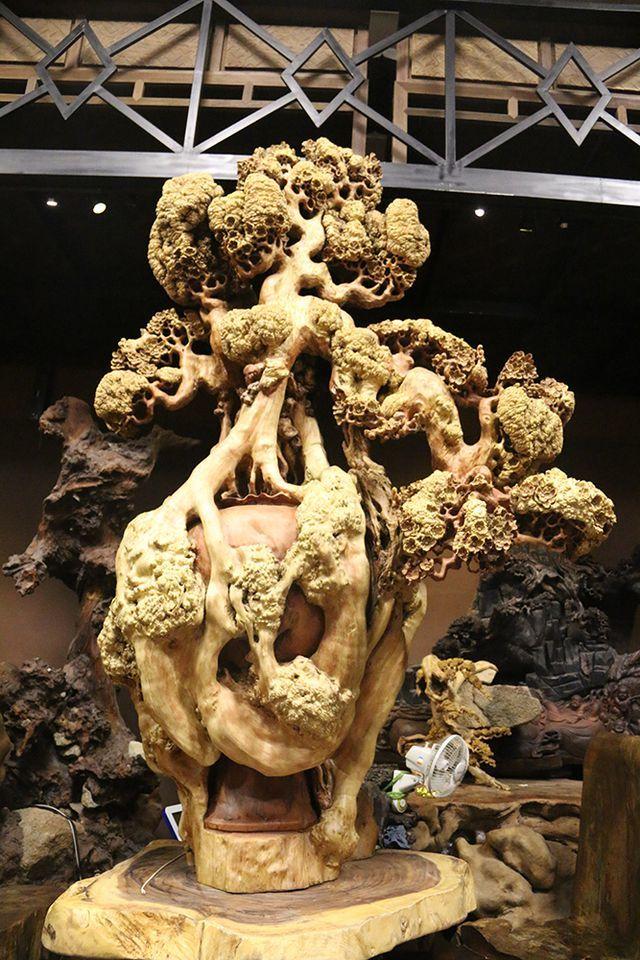 Siêu phẩm mai cổ từ gỗ nu quý hiếm giá bạc tỷ của dân chơi Hà Nội-8