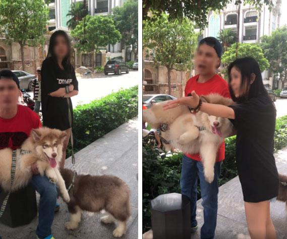 """Bị nhắc nhở khi dắt chó trong khuôn viên chung cư, nam Việt Kiều quát nạt bác bảo vệ cùng nhiều người lớn tuổi: Chó tao là chó nằm máy lạnh!""""-2"""