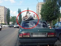 Kinh hoàng xác chết được chất lên nóc ô tô chạy giữa phố