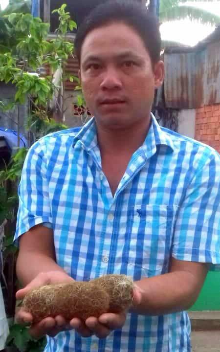 Dân phát hiện 3 vật thể lạ nghi cát lợn ở An Giang-1