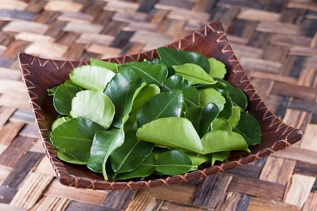 Lá chanh ở Việt Nam chỉ để ăn với thịt gà, sang châu Âu bán 6,3 triệu/kg-2