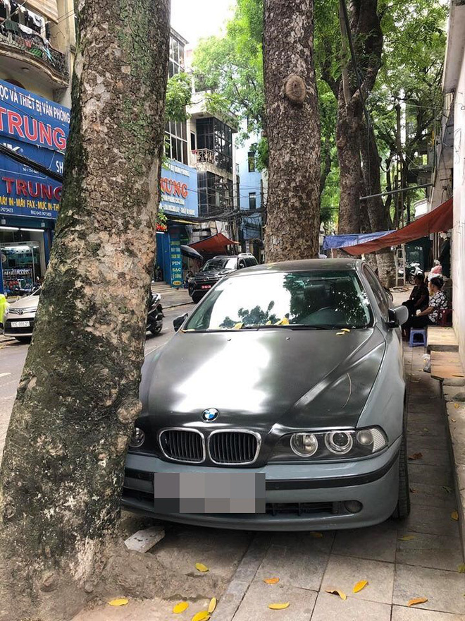 Màn đỗ xe đỉnh cao trên phố Hà Nội khiến dân mạng hoang mang: Xe hay cây có trước?-3