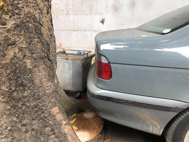 Màn đỗ xe đỉnh cao trên phố Hà Nội khiến dân mạng hoang mang: Xe hay cây có trước?-5