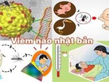 Đã có 1 trường hợp trẻ mắc viêm não Nhật Bản tại Hà Nội: Bệnh viêm não Nhật Bản có lây không và những ai dễ mắc bệnh?