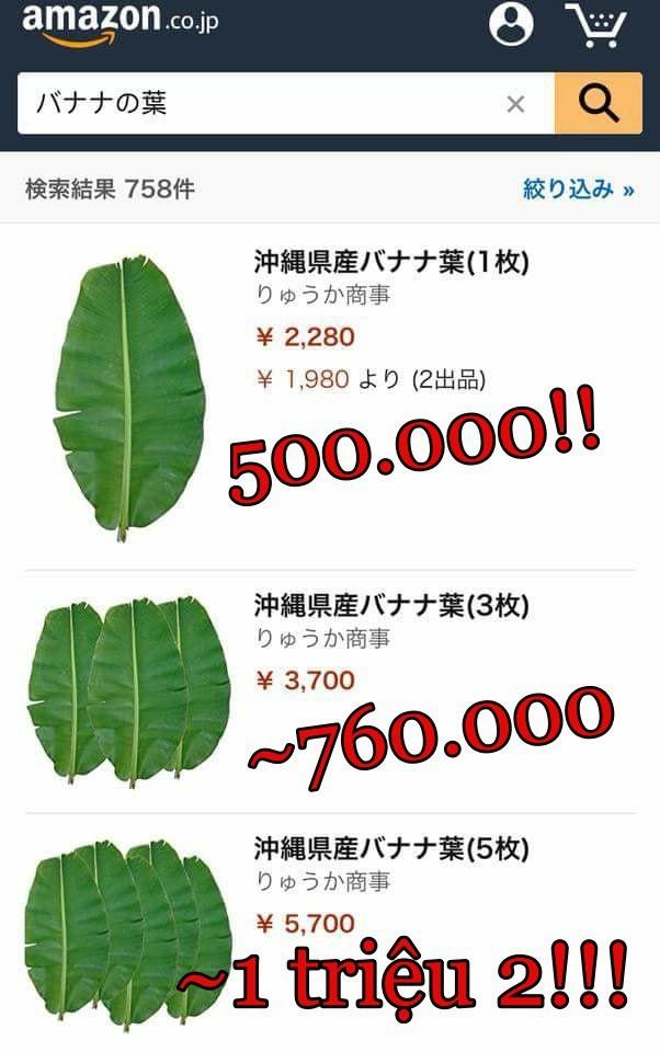 Combo 5 chiếc lá chuối giá 1.168.000 đồng gây choáng váng-2