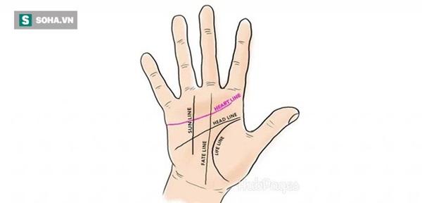 5 đường chỉ tay quan trọng đối với cuộc đời mỗi người-1