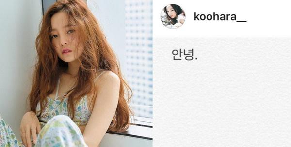 Sốc: Nữ idol đình đám Goo Hara cố tự tử tại nhà riêng, để lại lời nhắn Tạm biệt fan trên Instagram-1