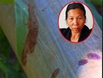Tiết lộ sốc về nữ hung thủ sát hại ba 3 bà cháu ở Lâm Đồng-6