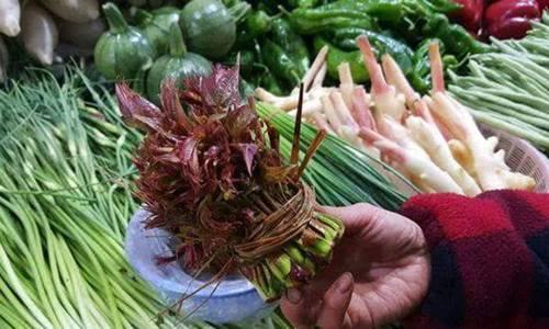 Loại rau đầy rẫy ở nông thôn nhưng vào siêu thị bán với giá hơn 400.000 đồng/nửa kg-1