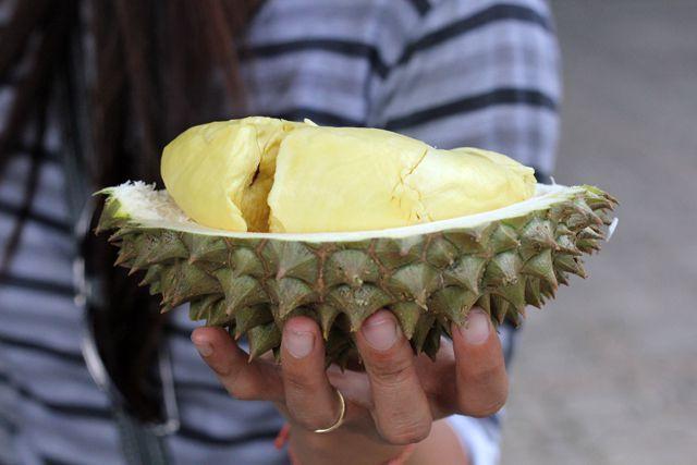 Đến nơi một trái sầu riêng có thể lên giá tới 730 triệu/trái-3