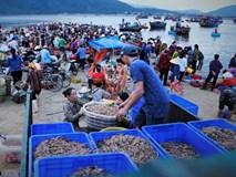 Soi đèn đi chợ hải sản Cồn Gò lúc tờ mờ sáng