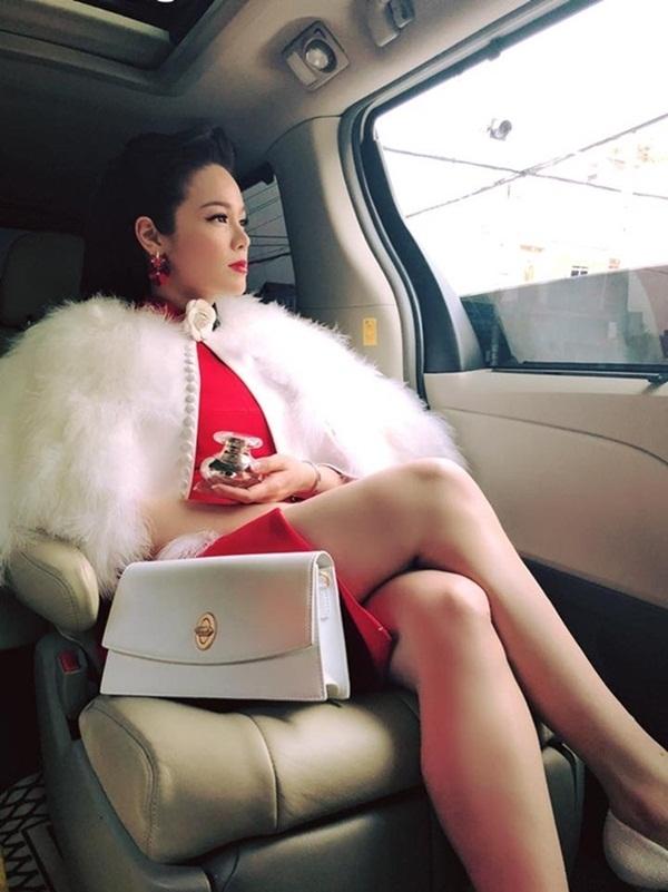Nhật Kim Anh không cần chồng vẫn giàu nứt vách-12