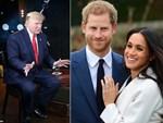 Mối thù hoàng gia mới: Meghan Markle lên kế hoạch chuyển về Mỹ sinh sống vì không chấp nhận ở vị trí thứ 2, đứng sau chị dâu Kate-2