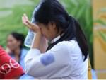 Nữ sinh Quảng Bình quỳ gối khóc xin thi lại môn Văn: Sở ưu ái vào trường không thi vẫn trúng tuyển?-4