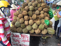 Sầu riêng rừng Campuchia rao 10.000 đồng nhưng bán tới 60.000 đồng/kg