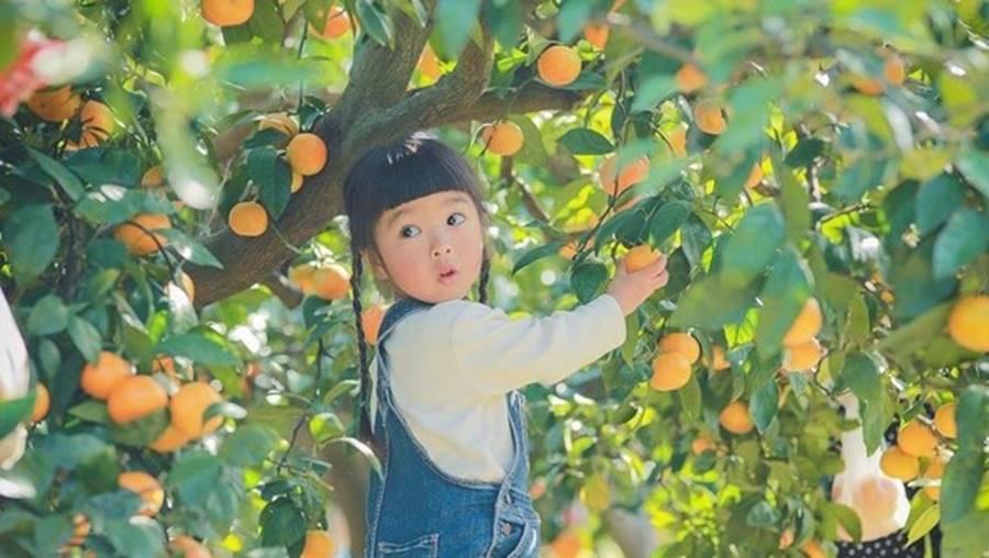 Kỹ năng nuôi dạy con siêu đẳng của cha mẹ Nhật để trẻ thông minh và có trách nhiệm hơn-6