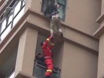 Bị bạn trai đuổi đánh, cô gái liều mình trèo qua cửa sổ tầng 6 để chạy trốn và cái kết khiến ai chứng kiến cũng muốn