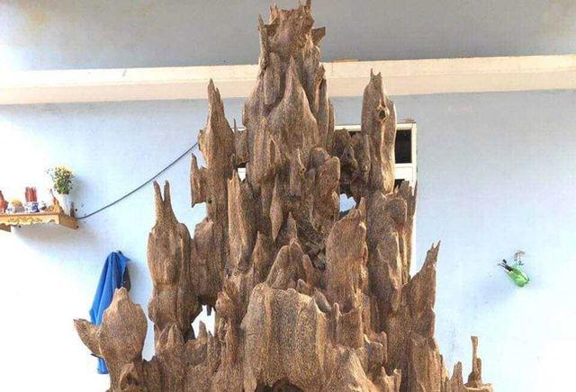 20 năm lặn lội, đại gia Hà thành ôm bộ sưu tập gỗ trầm lũa có 1 không 2-11