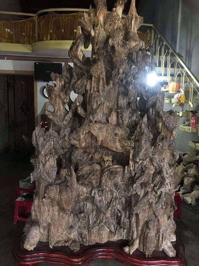 20 năm lặn lội, đại gia Hà thành ôm bộ sưu tập gỗ trầm lũa có 1 không 2-3