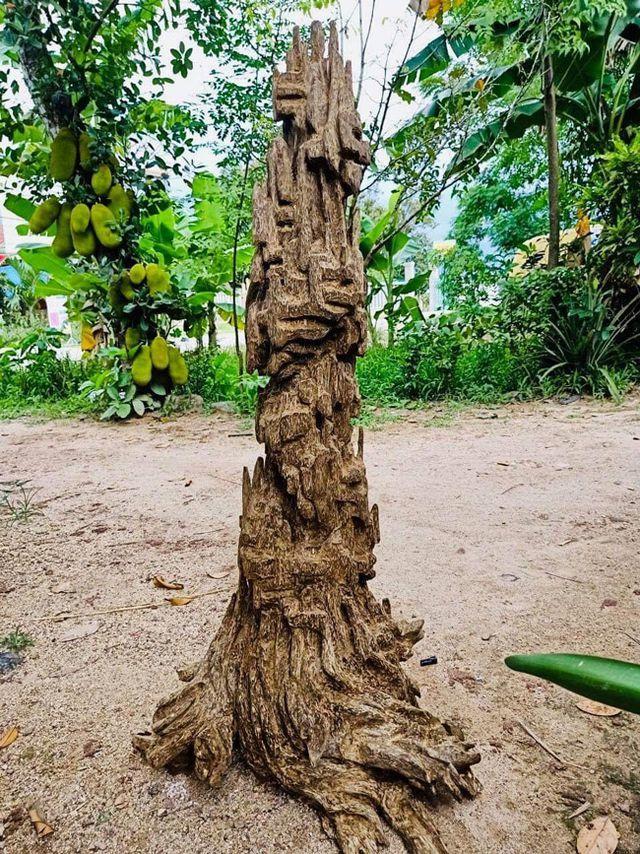 20 năm lặn lội, đại gia Hà thành ôm bộ sưu tập gỗ trầm lũa có 1 không 2-5