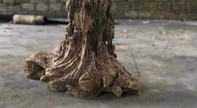 20 năm lặn lội, đại gia Hà thành ôm bộ sưu tập gỗ trầm lũa có 1 không 2-9