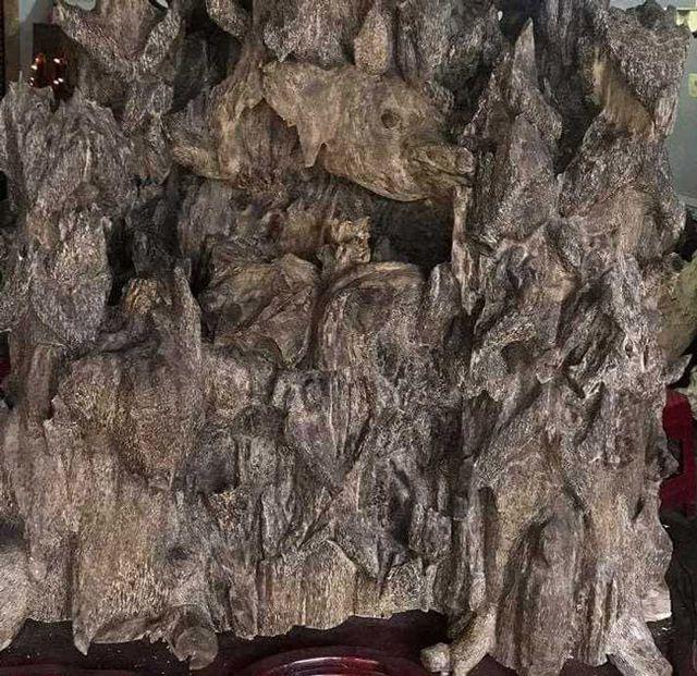 20 năm lặn lội, đại gia Hà thành ôm bộ sưu tập gỗ trầm lũa có 1 không 2-15