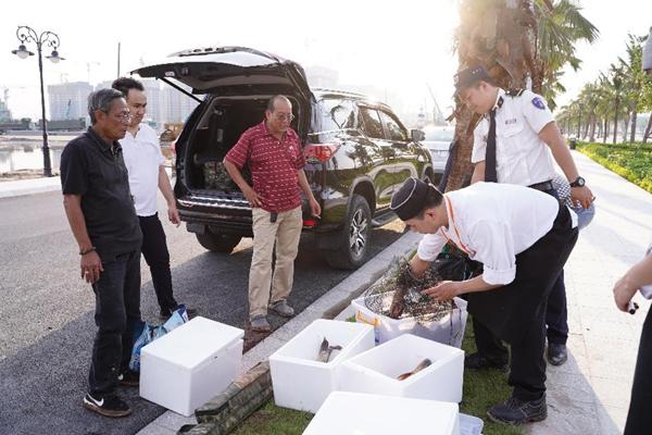 Vingroup thả 50 tấn cá xuống hồ Vinhomes Ocean Park-3