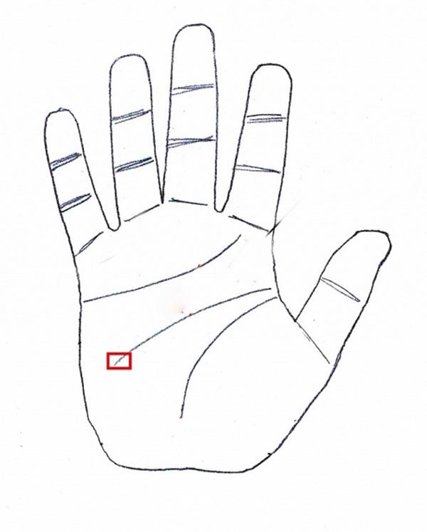 Lộ diện bàn tay bát phương tụ tài, quý nhân theo gót từ nhỏ, càng lớn tuổi càng dễ phát tài-3