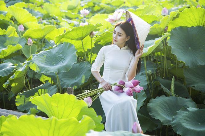 Những đầm sen tuyệt đẹp quanh Hà Nội nhất định phải check-in một lần-2