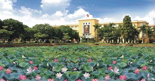 Những đầm sen tuyệt đẹp quanh Hà Nội nhất định phải check-in một lần-10