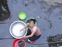 Ăn mừng kênh Youtube đạt 20k sub, con trai đổ nguyên thau trứng lên đầu mẹ rồi quay clip khoe