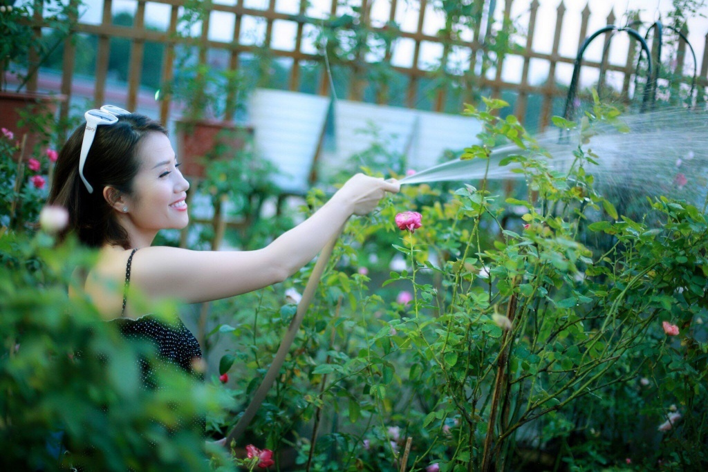 Sân thượng nhỏ chứa cả trăm gốc hồng đẹp mê hoặc của mẹ ba con ở Hà Nội-5
