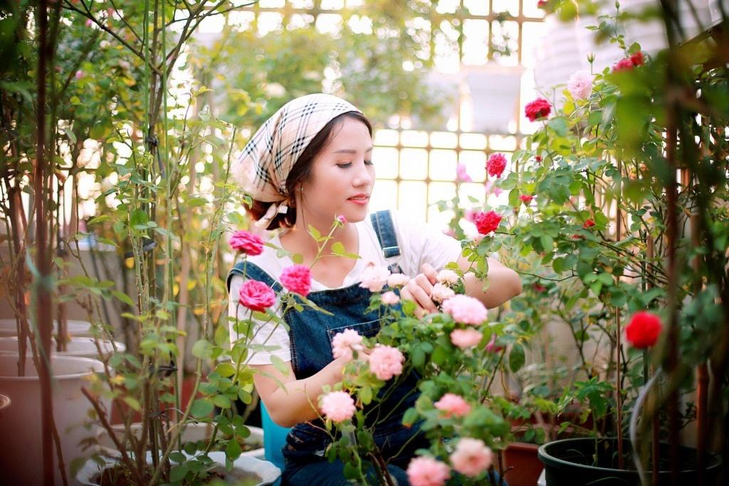 Sân thượng nhỏ chứa cả trăm gốc hồng đẹp mê hoặc của mẹ ba con ở Hà Nội-6